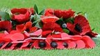 Poppies on football field