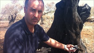 Nidam Qaraweq with his burnt olive tree
