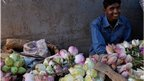Flower seller with baskets of lotus flowers