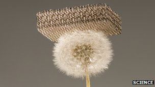 The metallic micro-lattice on a dandelion head