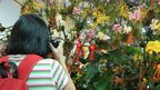 A visitor taking pictures at the 20th World Orchid Conference in Singapore, 18 November 2011