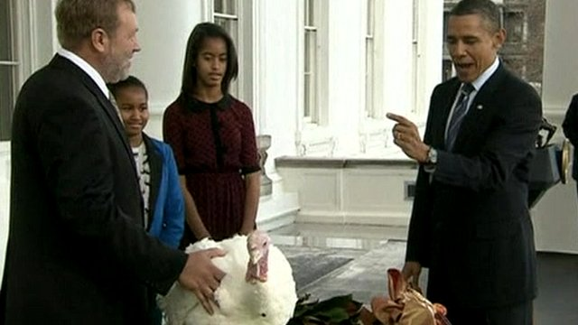 President Obama pardons a turkey