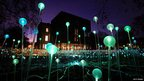 """Glass spheres are illuminated in Bruce Munro's """"Field of Light"""" installation in the grounds of the Holburne Museum, Bath"""