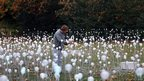 The installation uses 5,220 fibre-optic stems to give off light