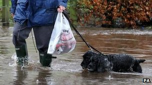 Man walking his dogs through flooding  near Bridge of Allan