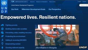 UNDP website