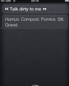Screen of Siri question