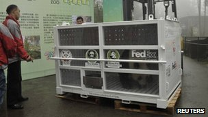 Panda in FedEx container