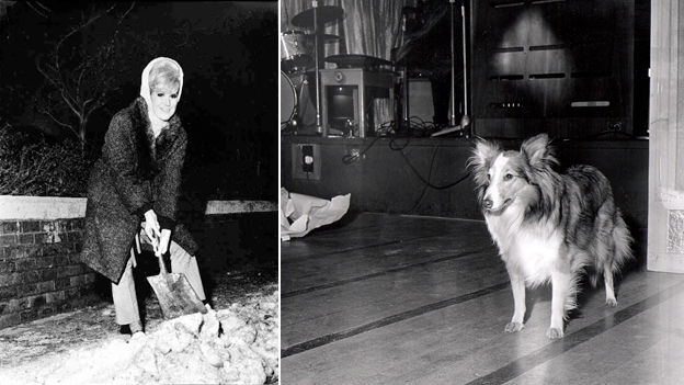 Dusty Springfield shovels snow in 1965 and the dog that just turned up