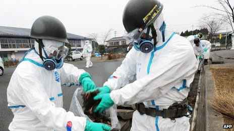 Decontamination work near the Fukushima plant