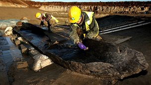 Bronze Age boats have been found by archaeologists at a quarry in Whittlesey