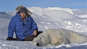 David Attenborough with an anaesthetised polar bear
