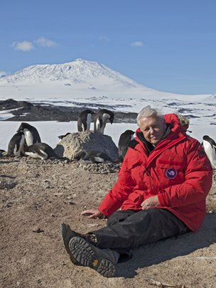 Sir David Attenborough at Cape Royds Adélie penguin colony, Antarctica.