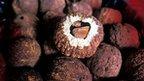 Brazil nuts (Image: FAO/Giuseppe Bizzarri)