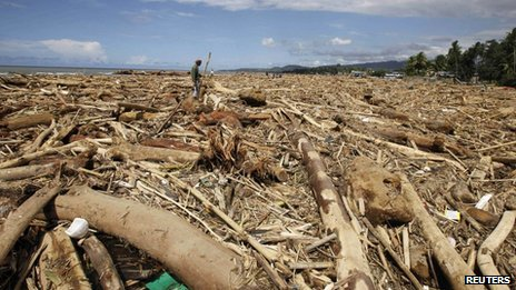 A man gathers wood amid logs and debris washed ashore on Tuesday, four days after Typhoon Washi hit a village in Iligan city, southern Philippines