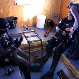 The team preparing for a dive