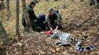 Team working on an Amur leopard in Russia (c) Wildlife Vets International