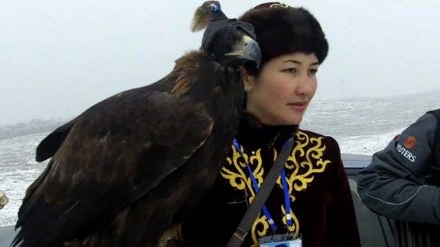 Female falconer with eagle