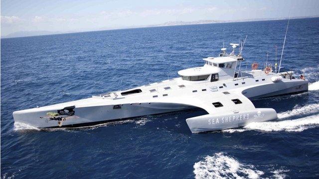 The Brigitte Bardot anti-whaling ship