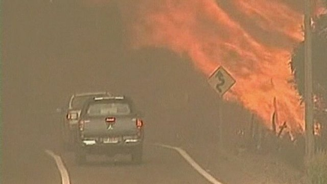 Chile forest fires
