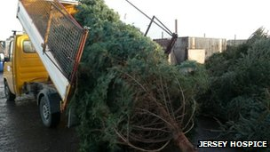 Jersey Hospice Christmas tree collection