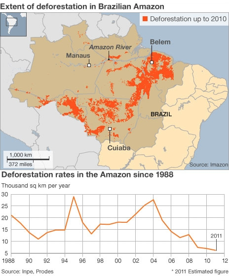 Graphic showing Amazon deforestation