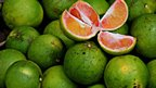 Green oranges in Ghana (Photo from BBC News website reader Paul D Lee)