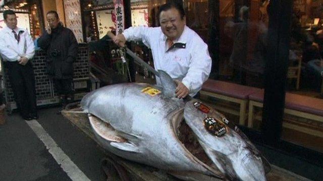 Mr Kiyoshi Kimura and tuna