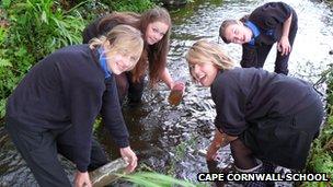 pupils on biology field trip