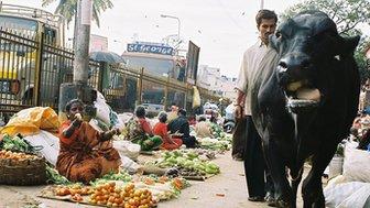 Street scene in Hyderabad