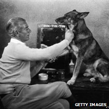 Rin Tin Tin being groomed by his owner Lee Duncan, 1935