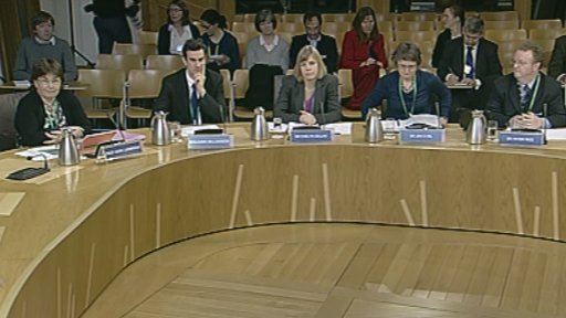 Health Committee panel giving evidence
