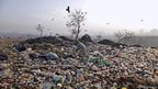An elderly Pakistani man searches for items in a garbage dump