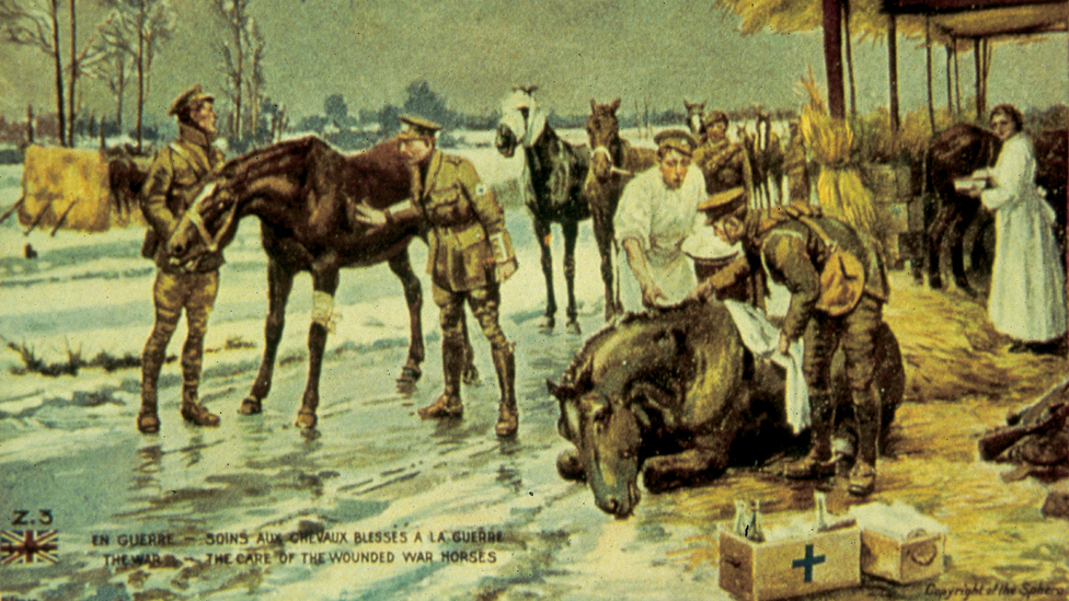 BBC News - The Blue Cross opens WWI war horse archive