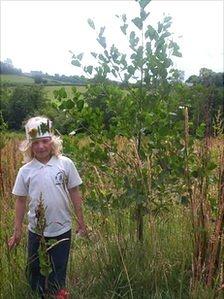 Planting at Coed Ysgubor Wen