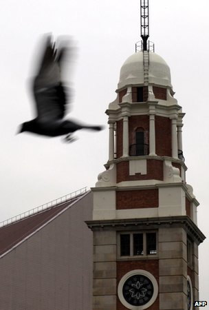 Bird flying past tower