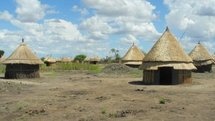 Village of Bildak in Ethiopia&#039;s Gambella region (Pic courtesy of HRW)