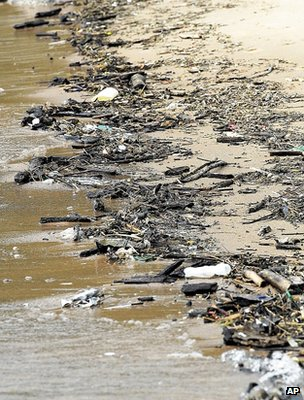 Debris on shoreline (Image: AP)