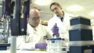 Scientists at the University of Warwick