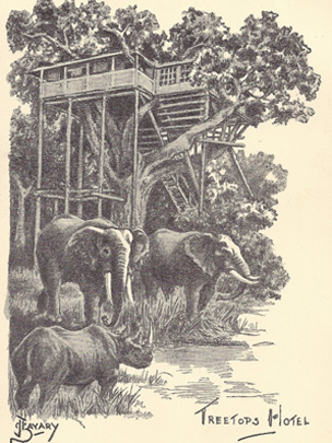 Treetops resort in Kenya as it was in 1952