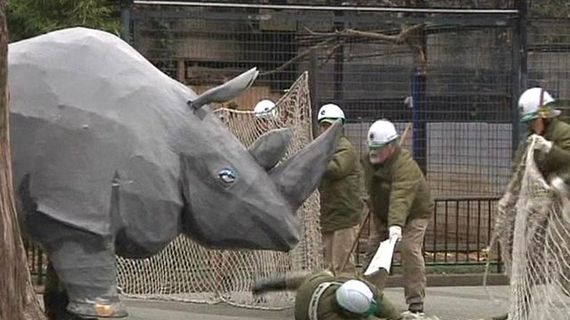 A fake rhino 'attacks' staff armed with fake tranquilisers at a Tokyo Zoo