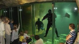 The aquarium attracts young and old alike