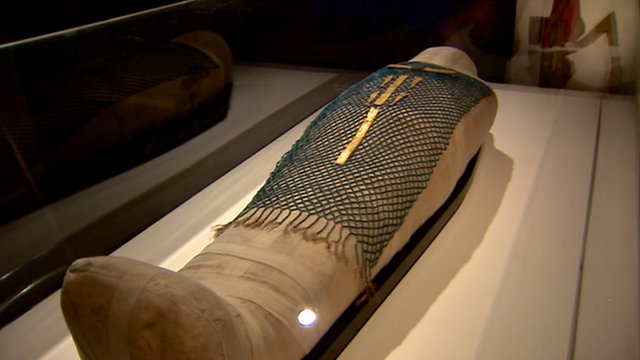 A mummy in a museum exhibition