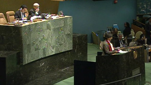 The United Nations High Commissioner for Human Rights, Navi Pillay, addressing the General Assembly