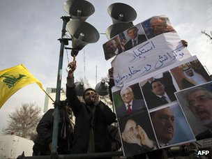 A demonstrator in Tehran expresses his support for the uprisings in the Arab world (4 February 2011)