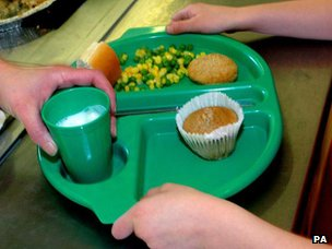 School lunch on plate