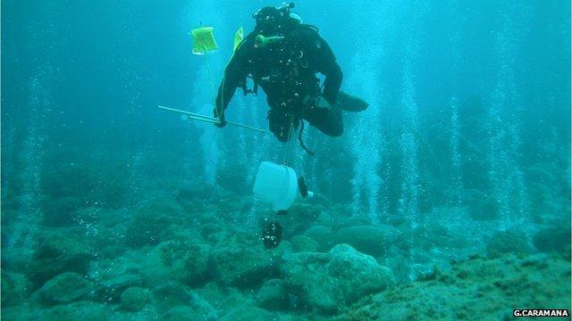 Diver in vent field