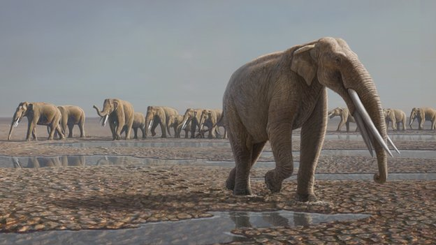 Artist's impression of the prehistoric elephants Stegotetrabelodon leaving footprints in the Arabian desert.