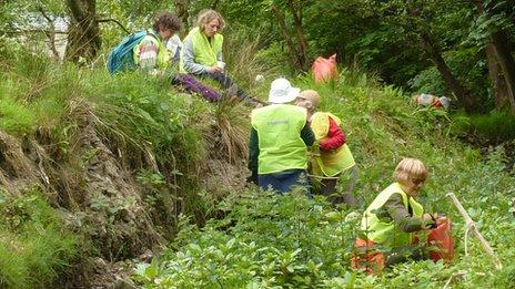 Volunteers pulling up Himalayan balsam in Pembrokeshire