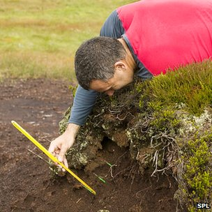 Scientist measuring depth of peat erosion